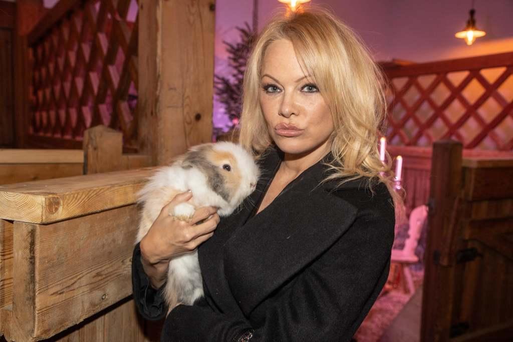 Pamela Anderson igazi állatvédő