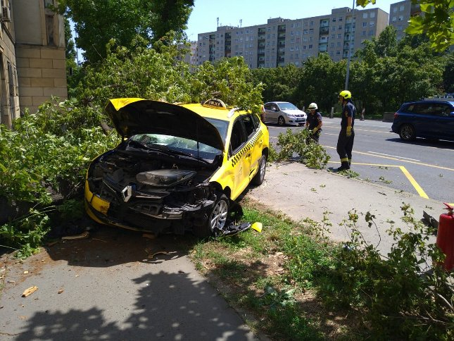 Felvágta az ereit, majd autóba ült egy budapesti sofőr